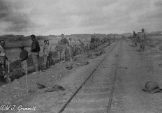 Light gauge railway under construction, Mesopotamia, 1917/11918