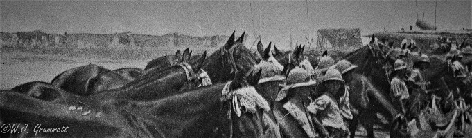 Cavalrymen and horses, Persian Front, Mesopotamia, 1917