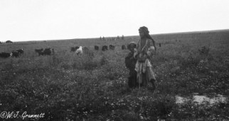 Tending the flock, Mesopotamia, 1917/18